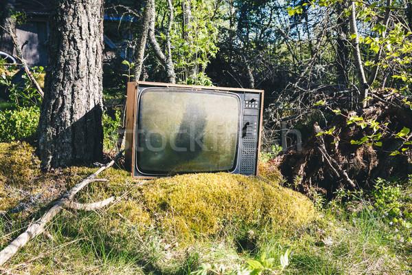 Edad televisión forestales abandonado naturaleza Foto stock © Juhku