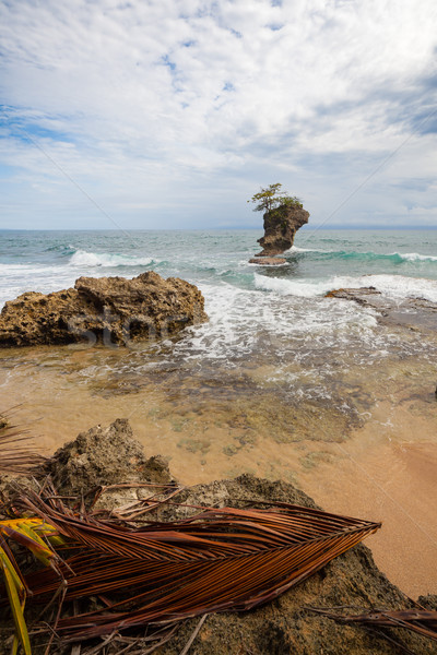 Rocky beach in Manzanillo Costa Rica Stock photo © Juhku