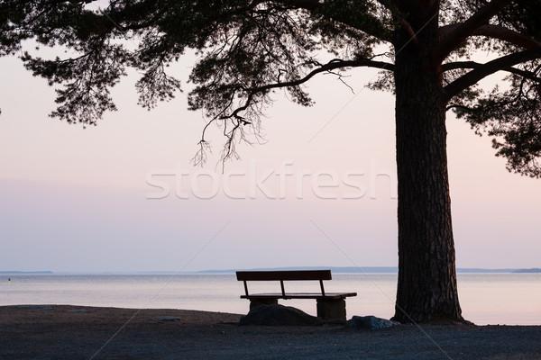 Bench and tree silhouette viewing to serene lake Stock photo © Juhku