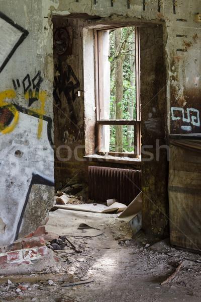 Kapualj ablak elhagyatott épület rendetlen építkezés Stock fotó © Juhku