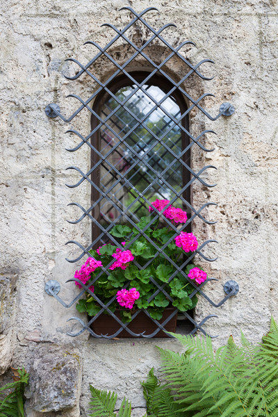 Castle window and vivid pink flowers Stock photo © Juhku