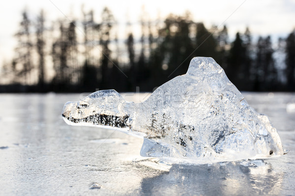 Chunk of ice looks like imagery animal Stock photo © Juhku