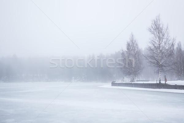 Stockfoto: Mist · bevroren · meer · landschap · bos · achtergrond