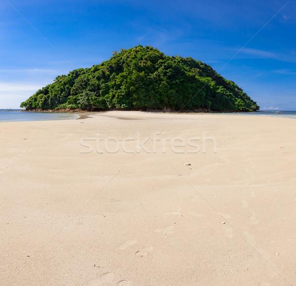 Trópusi erdő befejezés édenkert homok tengerpart Stock fotó © Juhku