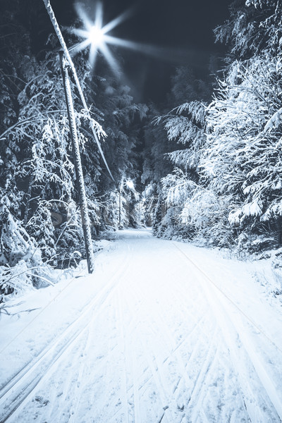 Black and white photo of a ski track at night Stock photo © Juhku