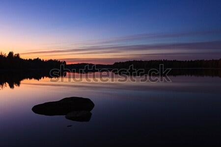 Sereno ver lago crepúsculo floresta Foto stock © Juhku