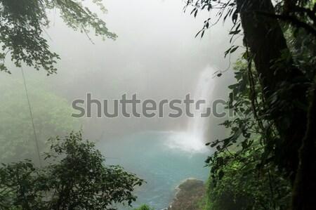 Rio çağlayan gün park Kostarika Stok fotoğraf © Juhku