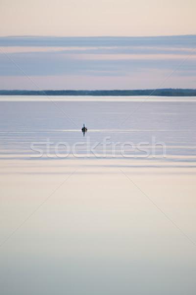 Gull on the lake Stock photo © Juhku