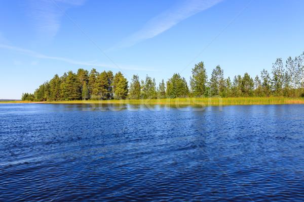 Meer landschap Finland zonnige zomer Stockfoto © Juhku