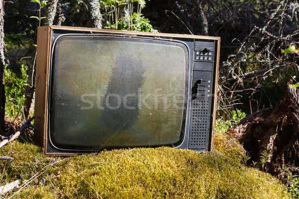 Stock photo: Old analog television in forest