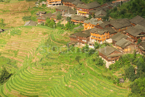 Landscape rice terraces and village in china Stock photo © Juhku