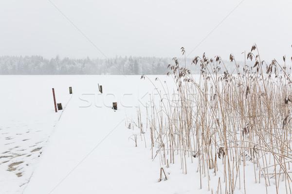 Kar fırtınası kış manzara dondurulmuş göl Finlandiya Stok fotoğraf © Juhku