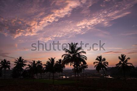 Beautiful sky after sunset india Stock photo © Juhku