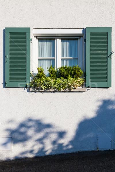 Window and plants simple Stock photo © Juhku