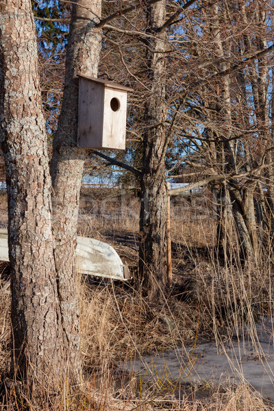 Waterfowl birdhouse on tree Stock photo © Juhku