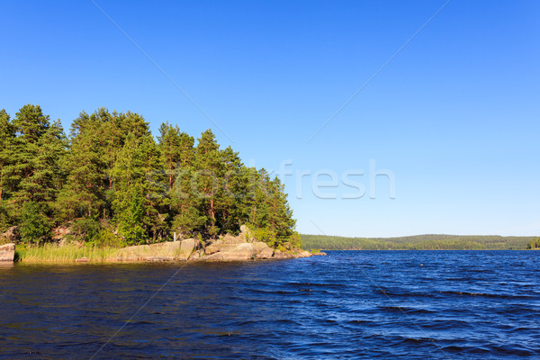 湖 風景 フィンランド 晴れた 夏 ストックフォト © Juhku