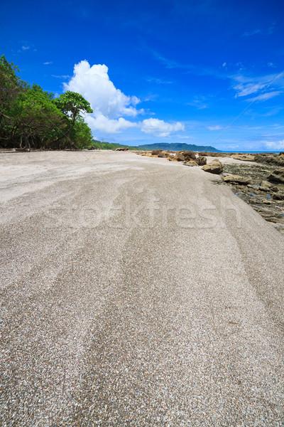 Playa tropical Costa Rica forestales naturaleza árboles Foto stock © Juhku