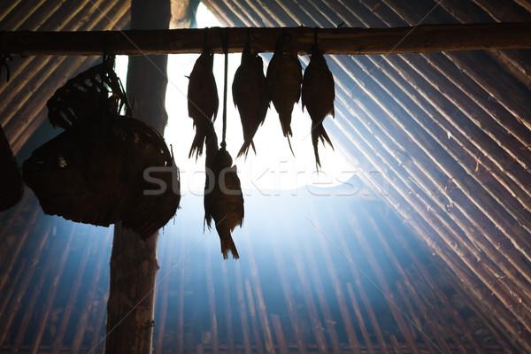 Vis opknoping steen leeftijd hut Stockfoto © Juhku