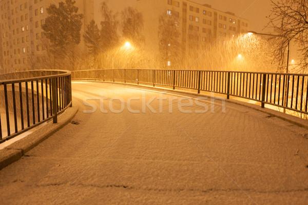 Hóesés üres éjszaka külváros fa város Stock fotó © Juhku