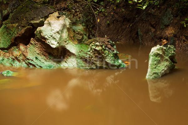 Kicsi dzsungel folyó Borneo sáros erdő Stock fotó © Juhku