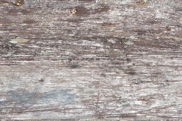 自然 グレー 木材 木の質感 テクスチャ ストックフォト © Juhku