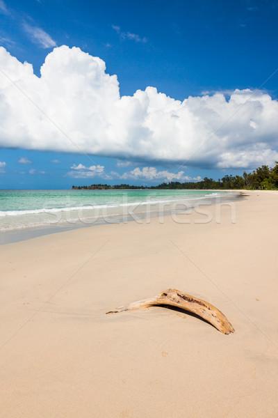 Tengerpart uszadék sötét kék ég homok fehér Stock fotó © Juhku