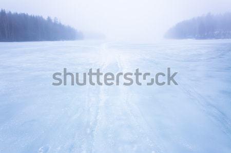 霧 凍結 湖 風景 森林 氷 ストックフォト © Juhku
