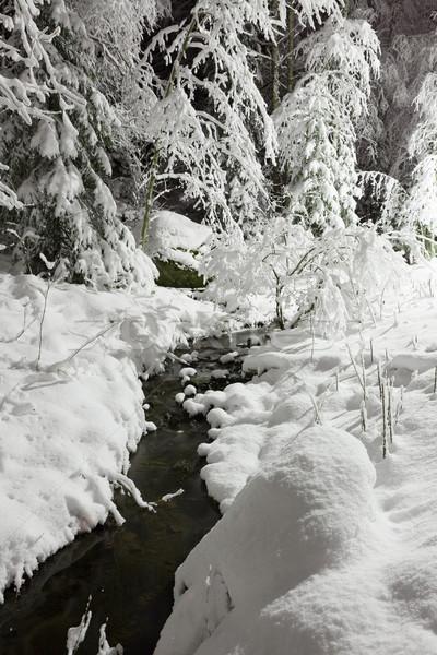 Klein stream sneeuw bos nacht natuur Stockfoto © Juhku
