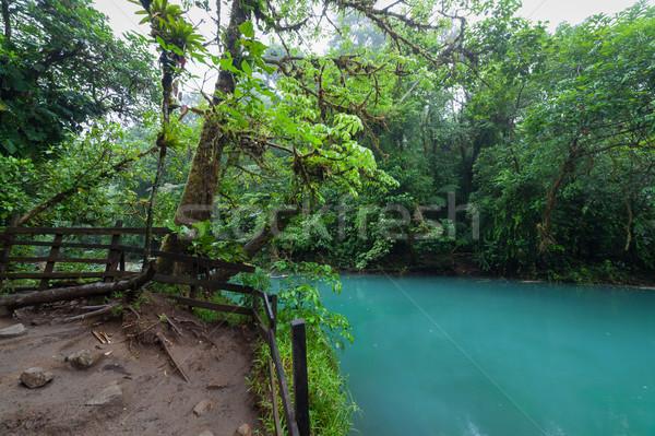 Рио пышный леса парка Коста-Рика воды Сток-фото © Juhku