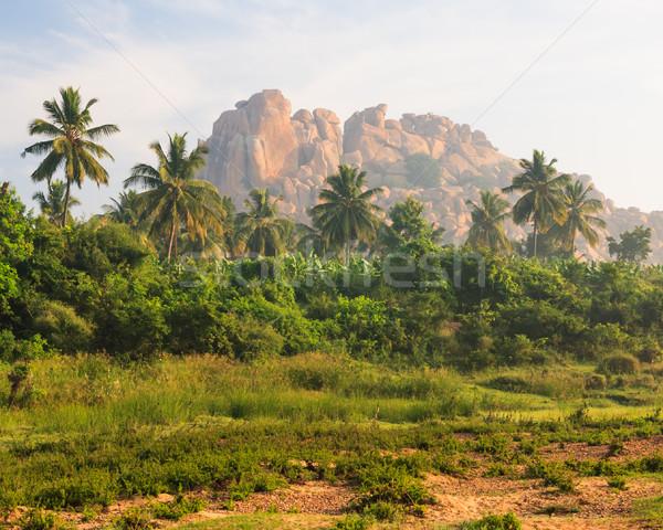 Exotic landscape in hampi india Stock photo © Juhku