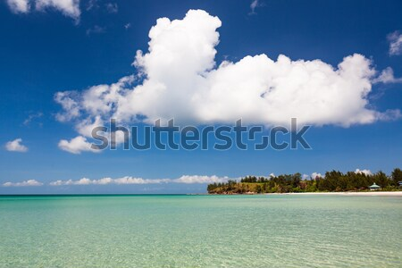 Paradise sand beach on sunny day Stock photo © Juhku