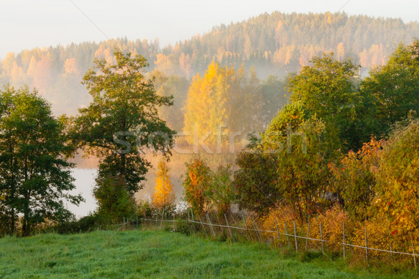 Сток-фото: осень · утра · пейзаж · Восход · свет · трава