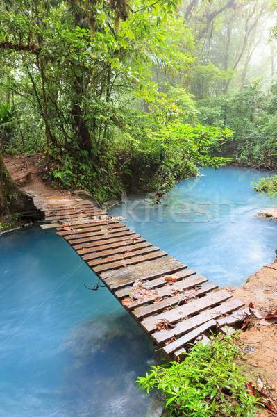 Rio kicsi fából készült híd park Costa Rica Stock fotó © Juhku