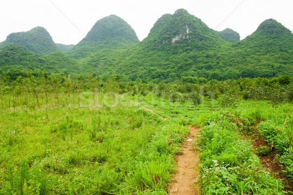 Chinese landscape Stock photo © Juhku
