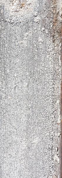 ひびの入った 白 塗料 金属の質感 金属 ストックフォト © Juhku