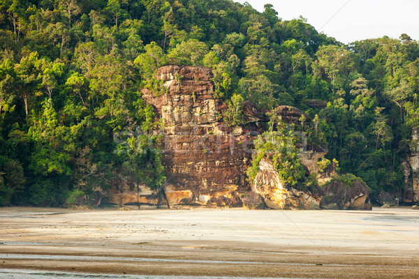 Big cliff rainforest and exotic sand beach Stock photo © Juhku