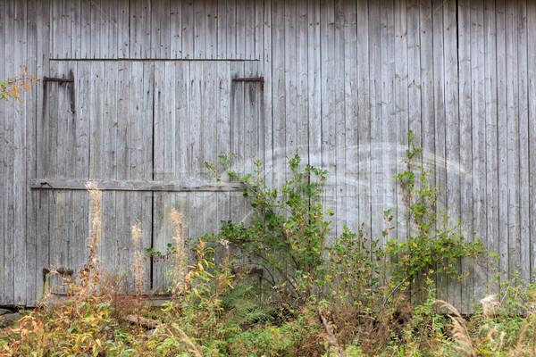 Eski gri ahır duvar kapı Bina Stok fotoğraf © Juhku