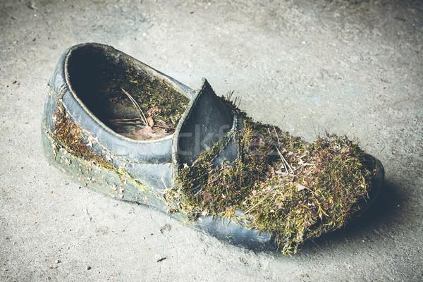 捨てられた 靴 具体的な 階 黒 汚れ ストックフォト © Juhku