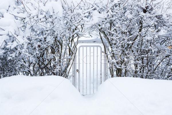 Stockfoto: Klein · poort · winter · home · natuur · sneeuw