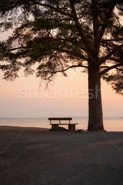 Pad fa sziluett derűs tó hajnal Stock fotó © Juhku