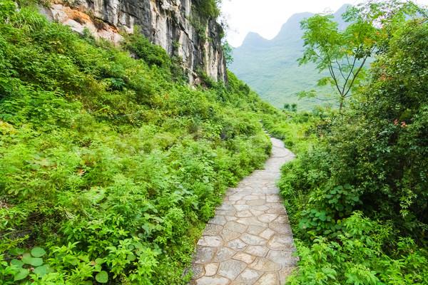 Stone path in yangshuo china  Stock photo © Juhku