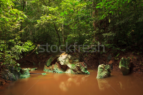 Klein jungle rivier borneo modderig water Stockfoto © Juhku
