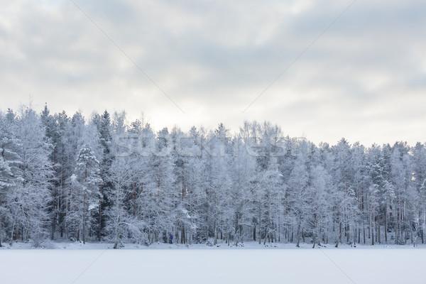 Winter meer landschap Finland avond zonsondergang Stockfoto © Juhku