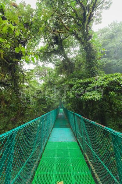 Hangbrug regenwoud opknoping wolk bos reserve Stockfoto © Juhku