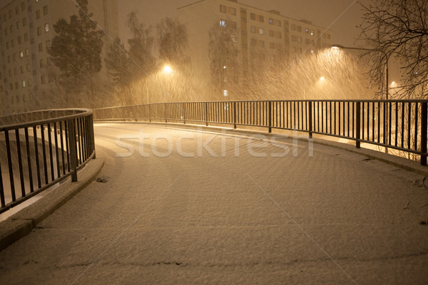 a lot of snowfall and empty walkway Stock photo © Juhku