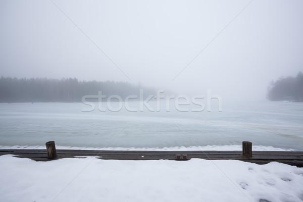霧 凍結 湖 風景 森林 背景 ストックフォト © Juhku