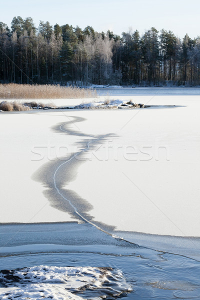 Thin ice on a lake Stock photo © Juhku