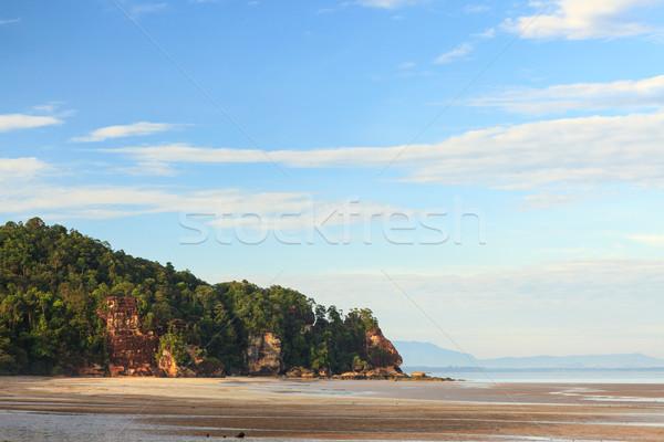Tropikal plaj düşük gelgit gündoğumu park borneo Stok fotoğraf © Juhku