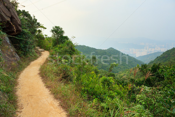 Pathway in hong kong mountains Stock photo © Juhku