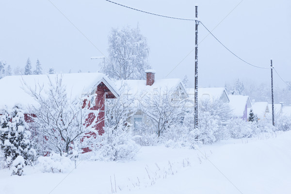 Small cottages covered in snow Stock photo © Juhku